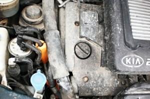 Reduzierung des kraftstoffverbrauchs kia carens